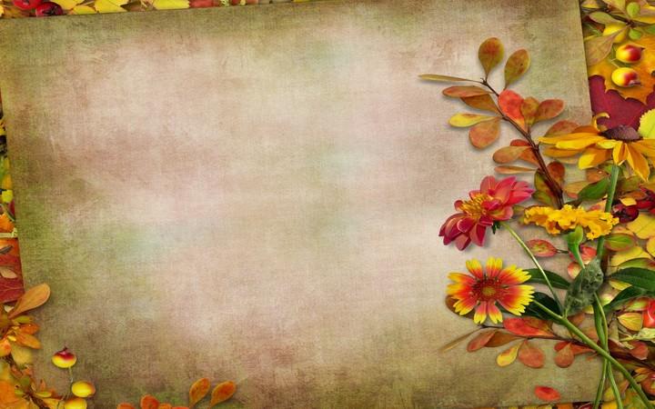 Autumn Vintage Background Leaves Autumn Leaves Berries ...