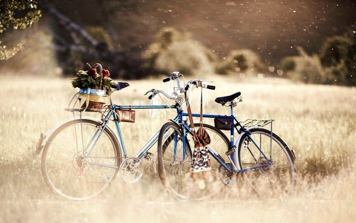 Bike In The Nature Love Art Classic,  background for desktop, mobile, hd
