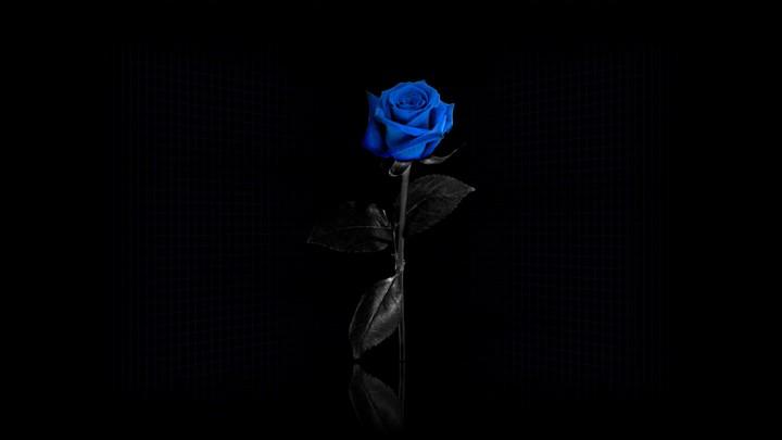 красивые картинки на рабочий стол черные № 447918 бесплатно