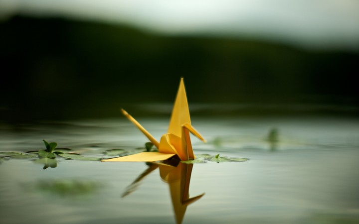 Crane Origami Pond Water