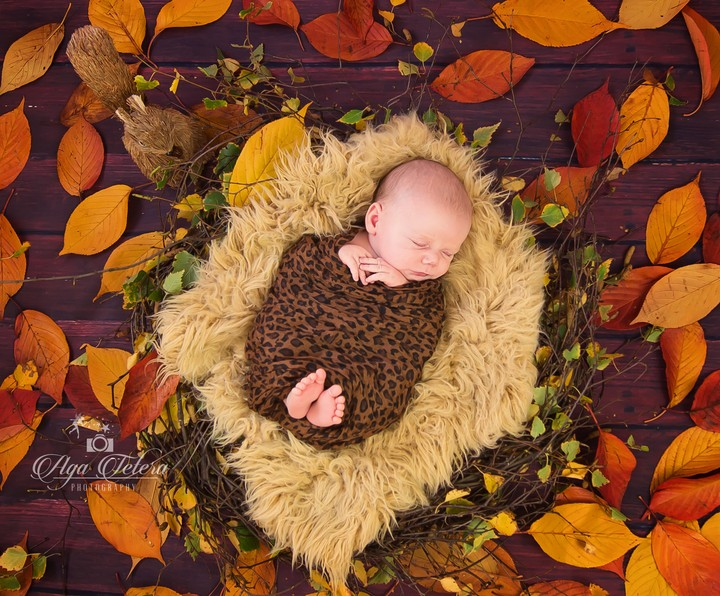 Cute Baby, Sleeping, Autumn