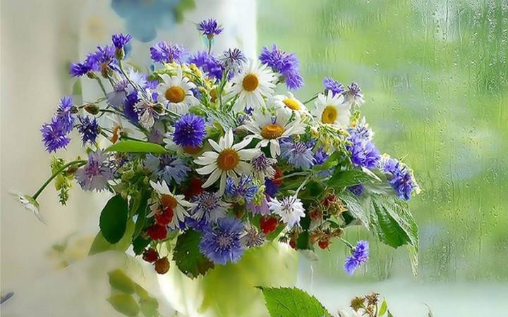 http://revelwallpapers.net/media/wallpapers/flowers_bouquets_vase_rain_glass_drops_berries.jpg