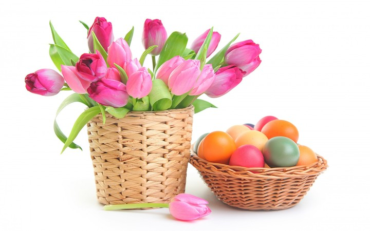 flowers, tulips, easter eggs pink