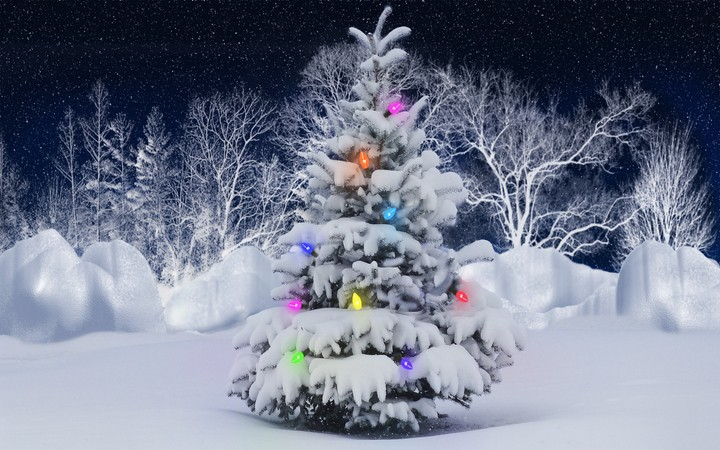 This Snow Covered Christmas Tree stands out brightly against the dark blue tones of this snow covered scene