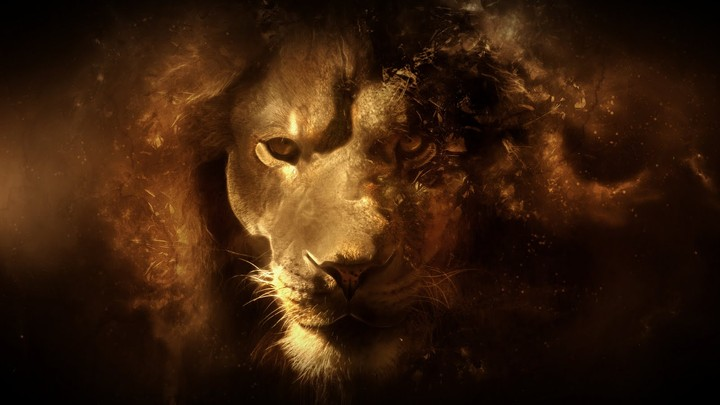 Lion Art Hd