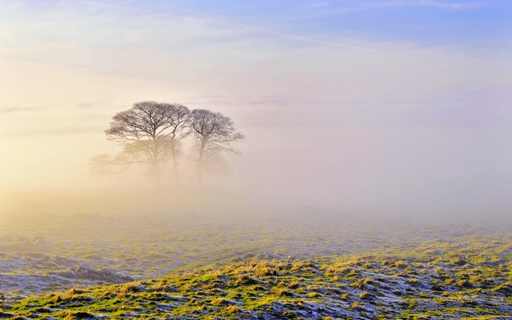 http//revelwallpapers.net/media/wallpapers/morning-fog.jpg