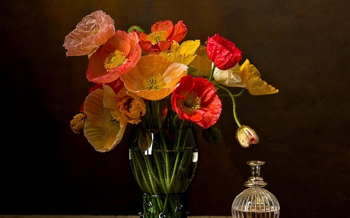 Poppies Flower Vase Bottle Table, flowers picture beautiful