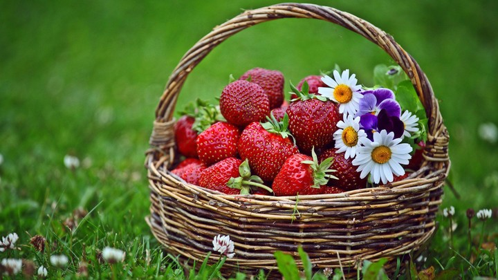 Strawberries and flowers in a basket