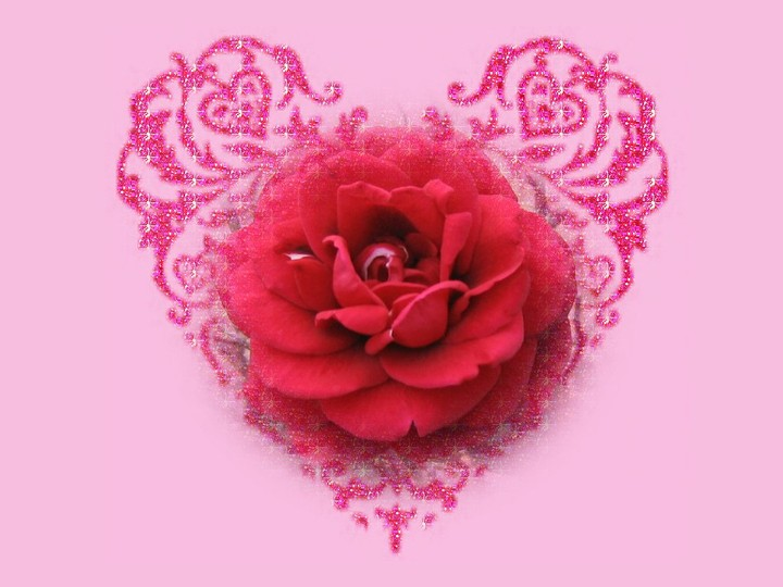 Beauty Wedding Roses Wallpaper By Elirogers