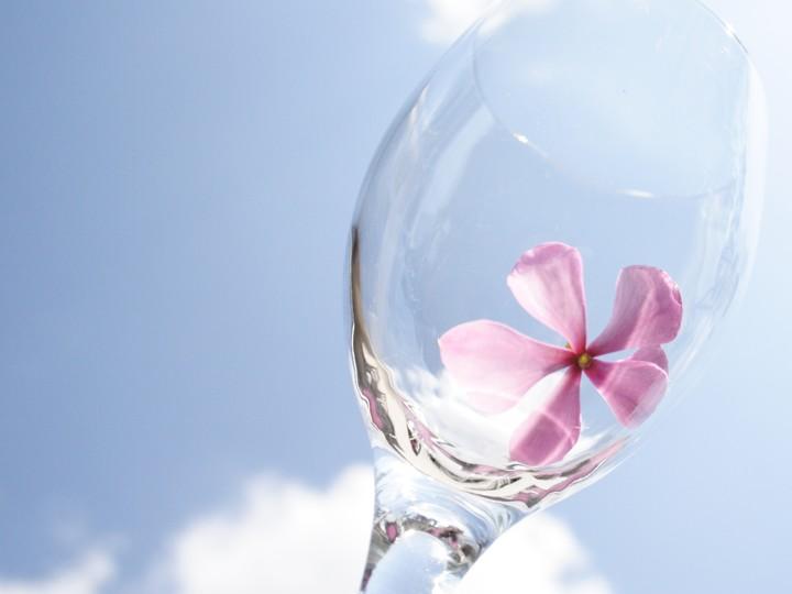 Sky Glass Flower Art Background For Your Desktop