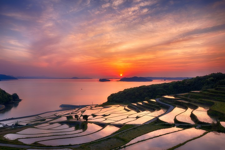 Sunset Over Terraces At Nagasaki Prefecture Japan