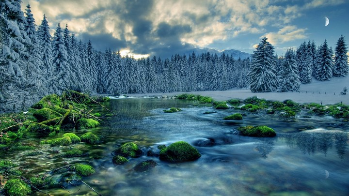 Winter forest stream with moon