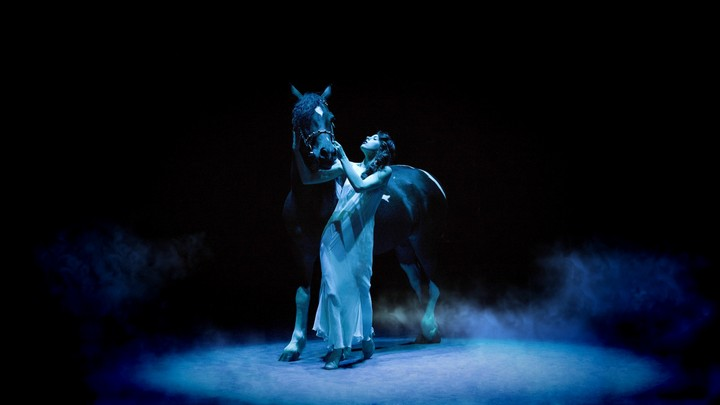 Women Horse Blue Light Artistic Background